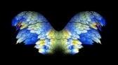 29 - 102088 - blue wren -