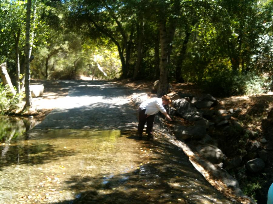 9 - 102999 - Water Blessings in Ojai -